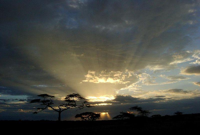 800px-Serengeti_sunset%2C_Tanzania